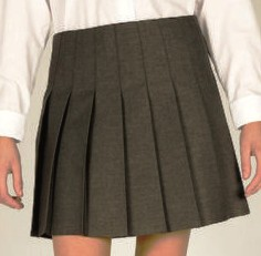 pleated_skirt_huntcliff